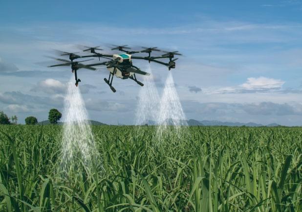 Agricoltura 4.0: in crescita l'innovazione tecnologica nel settore agroalimentare