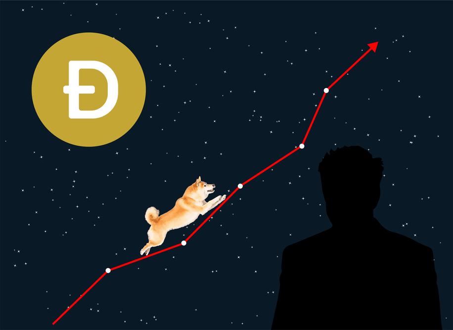 Cos'è Dogecoin, la criptovaluta che andrà sulla luna